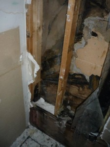 Fire Damage Restoration Los Angeles Wall